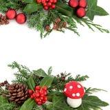Confine festivo di inverno Fotografia Stock