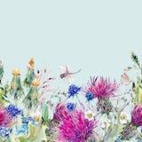 Confine floreale senza cuciture dell'acquerello di estate con i fiori selvaggi Fotografie Stock