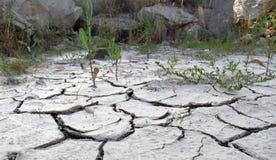 Confine screpolato del deserto immagini stock libere da diritti