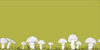Confine senza cuciture con i funghi disegnati a mano sui precedenti di colore illustrazione di stock