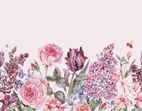 Confine senza cuciture del giardino della molla floreale porpora d'annata dell'acquerello royalty illustrazione gratis