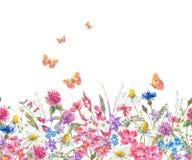 Confine senza cuciture dell'acquerello con i wildflowers illustrazione vettoriale