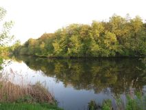 Confine verde della sponda del fiume fotografia stock libera da diritti