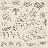 Confini decorativi di calligrafia, regole ornamentali, divisori Immagini Stock