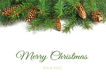Confini dell'albero di Natale fotografie stock