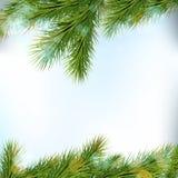 Confini dell'albero di Natale, su fondo leggero Fotografie Stock Libere da Diritti