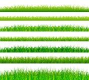 Confini dell'erba verde messi Fotografie Stock Libere da Diritti