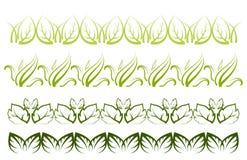 Confini della pianta di vettore Immagine Stock