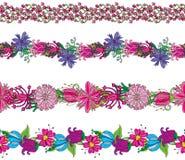 Confini floreali illustrazione vettoriale