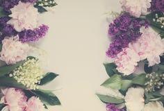 Confini floreali Fotografia Stock Libera da Diritti