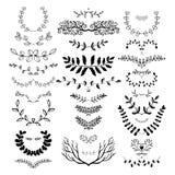 Confini floreali disegnati a mano, teste di legno, divisori, corone Fotografie Stock