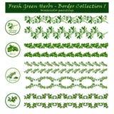 Confini gli acquerelli della raccolta 1 - erbe verdi - - decorativi Fotografie Stock