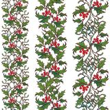 Confini senza cuciture ornamentali di Natale Rami del vischio e dell'agrifoglio con le foglie e le bacche Progettazione botanica  Fotografie Stock