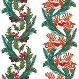 Confini senza cuciture ornamentali di Natale Rami del vischio e dell'agrifoglio con le foglie e le bacche Progettazione botanica  Immagine Stock