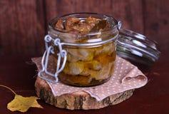 Confit de gésiers de poulet en huile d'olive Image stock