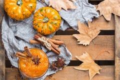 Confitura del atasco de la calabaza de otoño de la caída con las especias Foto de archivo libre de regalías