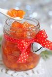 Confitura escarchada de las cáscaras de naranja Imagen de archivo libre de regalías