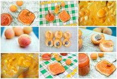Confiture d'abricot Photographie stock libre de droits
