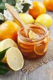 Confiture de citron Images stock