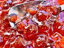 Confiture de fraisier commun Photographie stock libre de droits