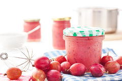 Confiture faite maison Image stock