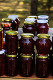 Confiture faite maison de fraisier commun Image stock