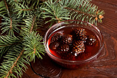 Confiture from fir cones Stock Images