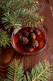 Confiture from fir cones Stock Image