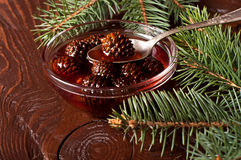 Confiture from fir cones Stock Photos