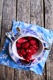 Confiture made of dogwood Stock Images