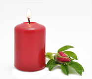 Conflagrant candle and wild rose Royalty Free Stock Image