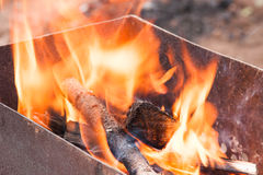 Conflagrant firewoods Stock Photography