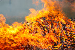 Conflagration Royalty Free Stock Photos