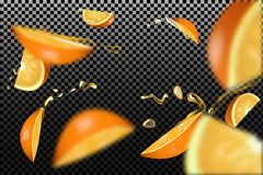 The confluence. Orange slices with juice drops and blur effect. Royalty Free Stock Photo