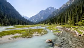 Confluence of pure and muddy rivers on road royalty free stock photo