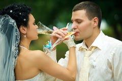 Confrérie potable de champagne de nouveaux mariés images libres de droits