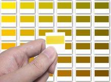 Confronti il vostro colore Immagini Stock