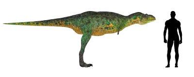Confronto di formato di Aucasaurus royalty illustrazione gratis