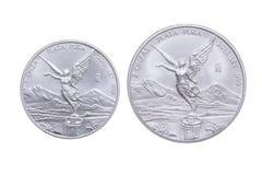 Confronto messicano della moneta d'argento del lingotto Immagine Stock