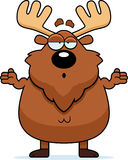 Confused Cartoon Moose Royalty Free Stock Images