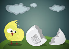 Confused chick. Colorful cartoon-style illustration Stock Image