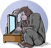 Confused gorilla Royalty Free Stock Images