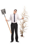Confused guy holding shovel and a whole tree Royalty Free Stock Photos