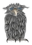 Confused old owl. A confused owl illustration based on a hand drawing Royalty Free Stock Images