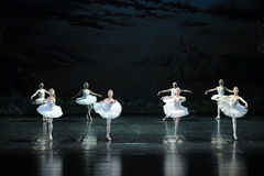 Confused swans-The Swan Lakeside-ballet Swan Lake. In December 20, 2014, Russia's St Petersburg Ballet Theater in Jiangxi Nanchang performing ballet Swan Lake Stock Image