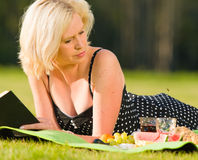 Confusion. Wasp make some confusion, lady on picnic Stock Image