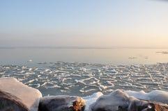 Congélation dans la glace. Photo stock