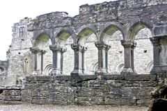 Ruins of Cong Abbey, west of Ireland. Cong Abbey is a historic site located at Cong, on the borders of counties Galway and Mayo, in Ireland& x27;s province of Stock Photography