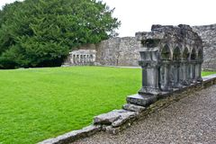 Ruins of Cong Abbey, west of Ireland. Cong Abbey is a historic site located at Cong, on the borders of counties Galway and Mayo, in Ireland`s province of Royalty Free Stock Photo
