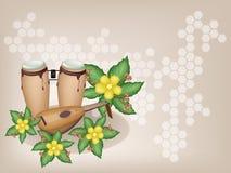Congas y laúd con las flores de Simpor en Brown Backg Fotos de archivo